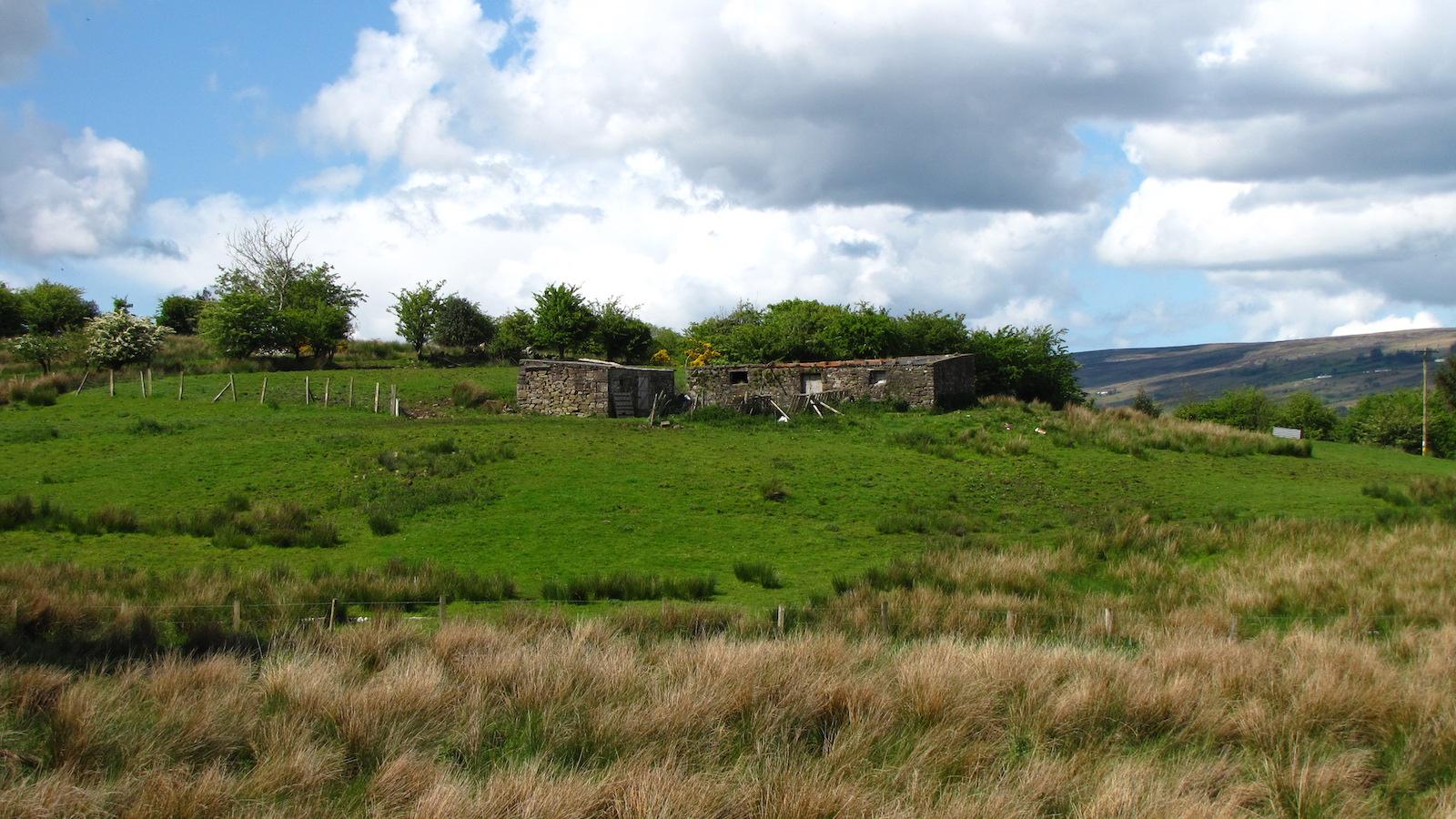 Landscape view of Roscommon, Ireland. Photo by James McNamara, 2009.